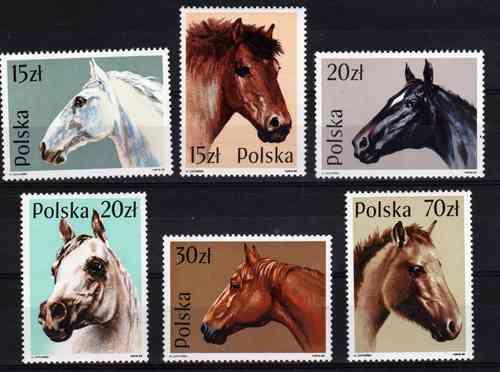 6 Estampillas De Polonia Tema Caballos Año 1989