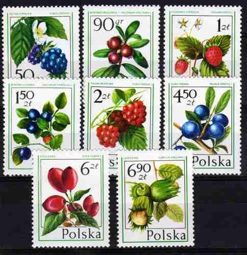 8 Estampillas De Polonia Tema Flores Frutos Año 1977