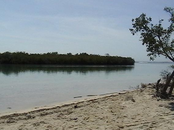 Venta - Terreno Con Playa - Azua - República Dominicana