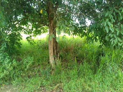 Terreno Em Maricá - Rj Caxito - Oportunidade