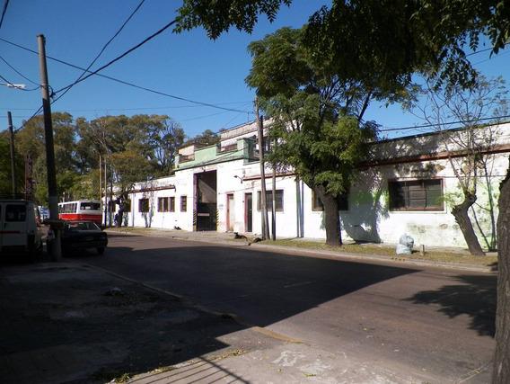 Terreno De 11600 M2 Con 6000 M2 Cubiertos - V. Dominico
