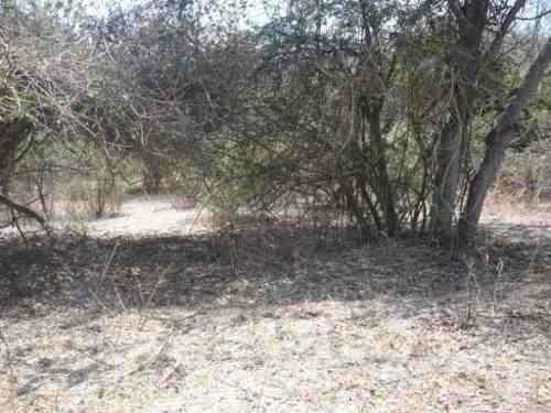Terreno En Alpuyeca, Barranca Frio
