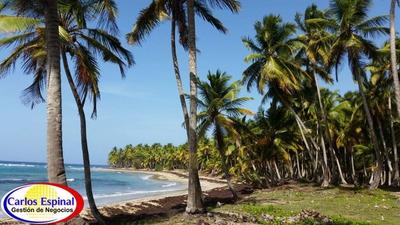 Terreno Con Playa De Venta En Miches, República Dominicana