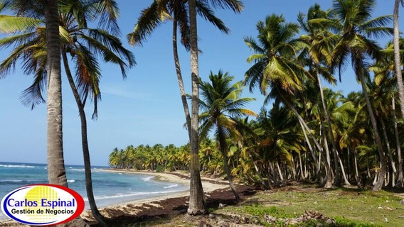 Terreno Con Playa De Venta En Miches, República Dominicana