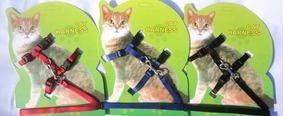 Coleira Com Guia Para Filhotes Dog E Gatos - Preta