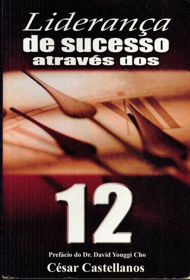 Livro Liderança De Sucessos Através Dos 12 - César Castellan