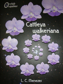 Livro Cattleya Walkeriana L. C. Menezes Capa Dura 273 Págs.