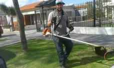 Jardineria Con Sebastian Carrasco