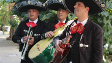 Mariachis Mexico En Bs As, Autentico Original 1154527200