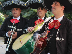 Mariachis Mexico En Bs As, El Autentico Y Original Mariachi
