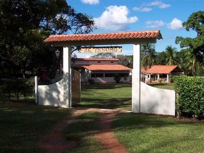 Hacienda El Tesoro, Puerto Lopez Meta