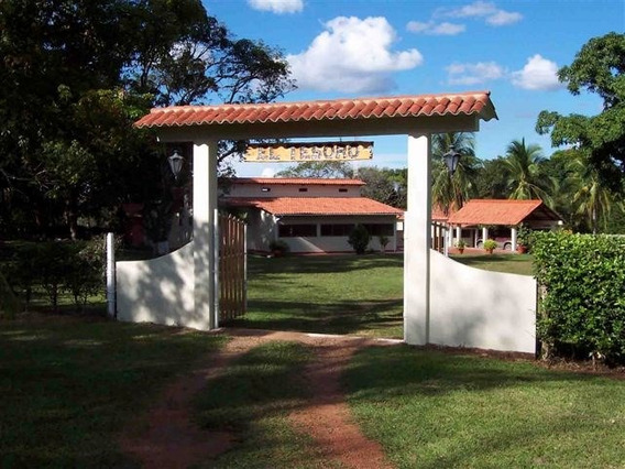Hacienda El Tesoro, Finca Puerto Lopez Meta