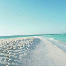 Fullday Isla La Tortuga