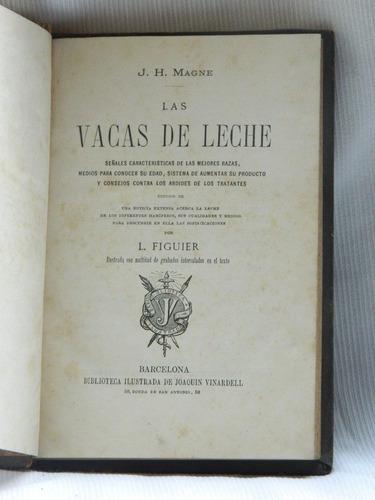 Las Vacas De Leche Razas Produccion J H Magne  1877