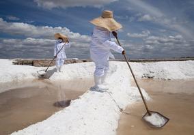 Anuncio Especial Com Castanha E Sea Salt Integral