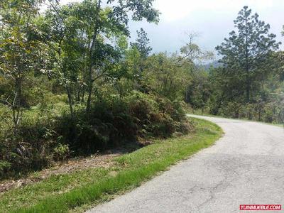 360 Vendeterreno El Valle Via Los Pinos 3000mt2 0274-2443623