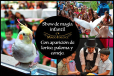 Show De Magia Infantil Con Paloma, Lorito Y Conejo - Mago