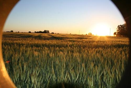 Imagen 1 de 6 de Campo-chacra-lote-rural-agricola-ganadera-011-15-50101555