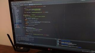Desarrollo Web Php Python Go Java