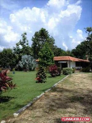 Casas En Venta En Carabobo - Libertador (tocuyito)