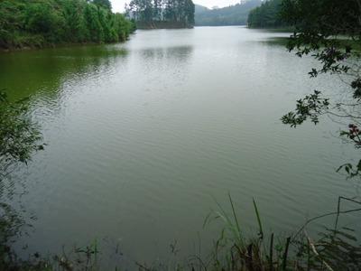 Sitio Na Represa Com Cascata Ref. 1080