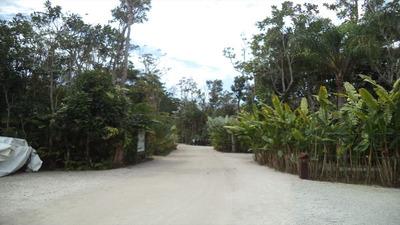 Ref.: 17567 - Casa Condomínio Fechado Em Sao Sebastiao, No Bairro Baleia - 4 Dormitórios