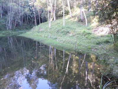 São Lourenço Da Serra Sitio Com 64.000 M2 [614]