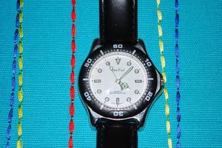 Reloj Pulsera Para Hombre Pierre Nicol