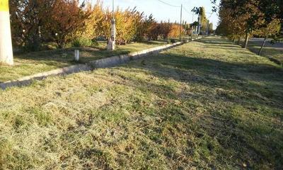 Lotes,terrenos,san Rafael Mendoza