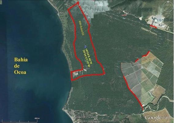 Oportunidad 500,800 M2, Con 400m2 De Playa, Electrificado