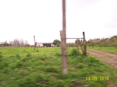 Chacra 14 Has A Mts De Perimetral Por Avda Pedro De Mendoza