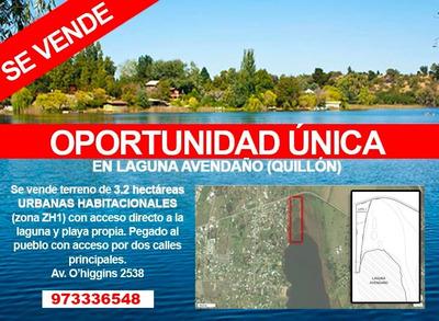 Oportunidad Única, En Laguna Avendaño Quillón