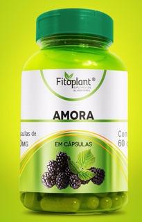 Amora 120 Cápsulas 600mg Caixa C/ 12 Potes Premiun Original Fitoplant