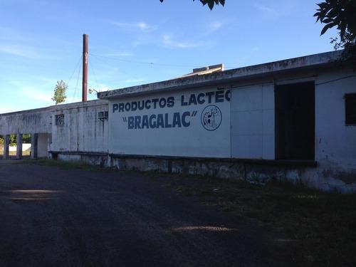 Imagen 1 de 14 de Fabrica De Quesos. Se Vende Y Se Alquila