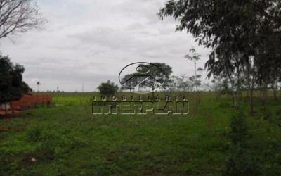 Ref.: Si50061 Tipo: Sitio Cidade: Cosmorama - Sp Bairro: Rural