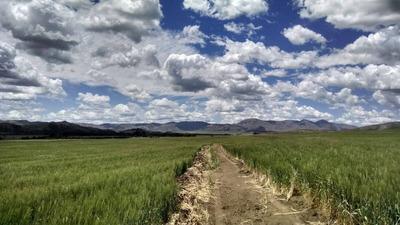 Terrenos De 1 A 3 Hectáreas Comarca Sierra De La Ventana