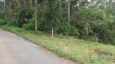 Recanto Verde- Fundos Para Área Verde, A 500 M Da Rodovia! - Codigo: Te0578 - Te0578