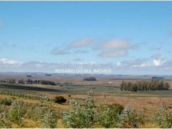 Fazenda Com 1600 Ha No Uruguai
