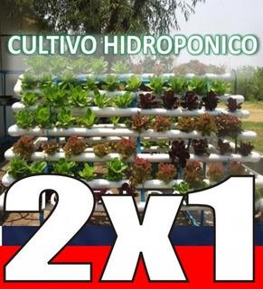 Aprende Hidroponia Cultivos Sembrar Hidroponicos Actualizado