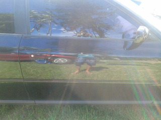 Maçaneta Da Porta Esquerda Externa Audi A3 1.8 Turbo