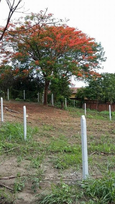 Terreno De Chácara No Cruzeiro Do Sul - Santa Barbara D Oeste - Codigo: Te0074 - Te0074