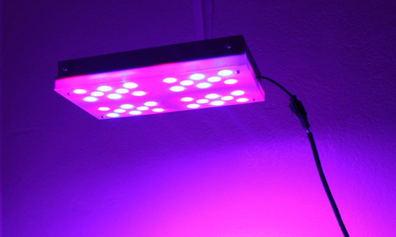 Led Grow 1000w Bossled Painel Grow