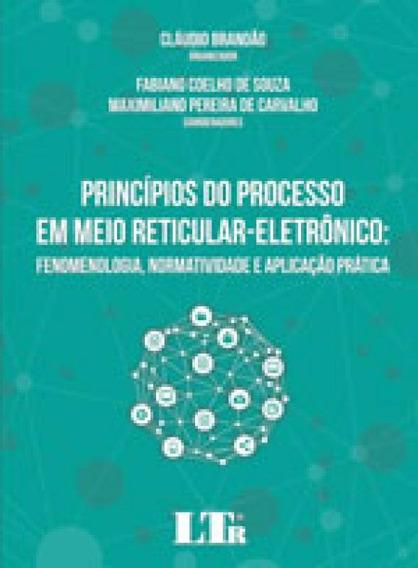 Principios Do Processo Em Meio Reticular-eletronico