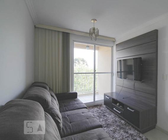 Apartamento Para Aluguel - Cidade Jardim, 3 Quartos, 68 - 893087650