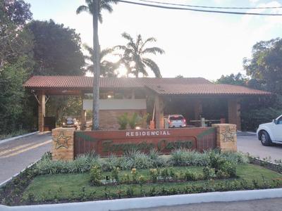 Terreno Em Aldeia Dos Camarás, Camaragibe/pe De 0m² À Venda Por R$ 290.000,00 - Te140786