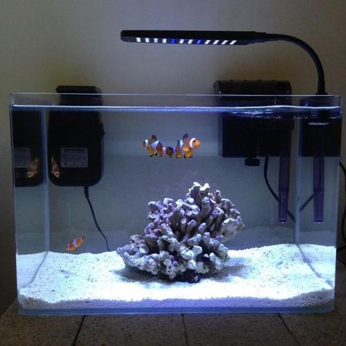 Acuario Marino Super Completo - Incluye Pez Payaso - Nemo