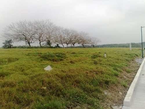 Terreno Venta Tampico Alto