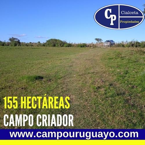Campo Con Casa A Reparar, Instalaciones