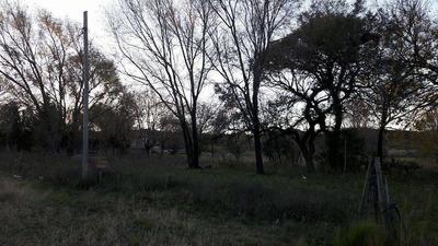 Lote En Balneario Municipal De Achiras -