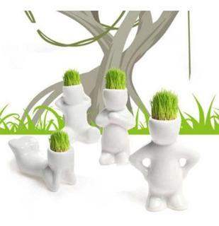Macetas Adornos Con Plantas Bonsai